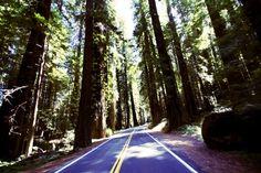 Eco Friendly Summer Road Trip