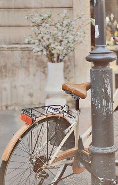 I would like a bike please.