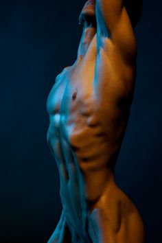 Stretched Torso See More Male Figures Photography at www.VitruvianLens.com