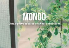 20 palabras más bonitas del idioma español (II) Mondo.