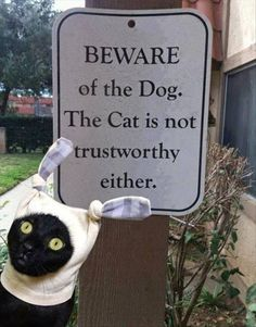 Funny Beware Dog Cat Trustworthy Sign Joke Picture