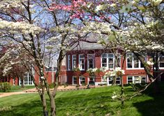 Let your education bloom at McKendree University!