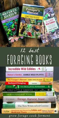 Here are the 12 best books on foraging and wildcrafting. These books will give you a great start on how to find, identify, harvest, and use wild plants! #foraging #wildcrafting #books