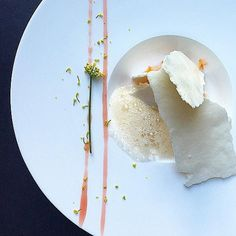 Orange aquafaba meringue, cardamom-beet ice cream, beet beer syrup, beer foam &fennel blossom by @purely_rose
