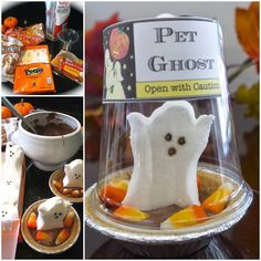 Amazing HALLOWEEN & FALL Ideas you will adore!
