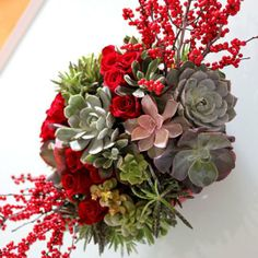 10 Ways to Use Succulents for the Holidays | Apartment Therapy
