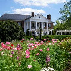 Boone Hall Plantation  - Plantations & Gardens Charleston, South Carolina.  Featured in TV miniseries and Movies (The Notebook).