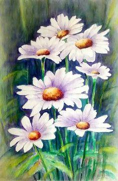 Watercolor Flowers Daisies. Elsa Nutz