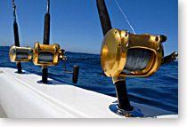 Things To Do In Port Aransas Texas: Go deep sea fishing