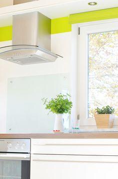 Modern Interior Kitchen Decoration Plant Home Colourful