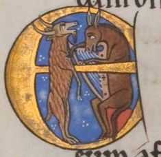 The Hunterian Psalter. Sp Coll MS Hunter folio historiated initial E depicting an ass playing a harp to a goat (psalm Medieval Life, Medieval Art, Medieval Music, Illuminated Letters, Illuminated Manuscript, Renaissance Music, Book Of Kells, Book Of Hours, Costumes