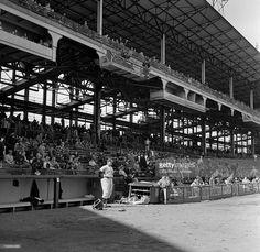 A CBS camera at Ebbets Field, Brooklyn, NY. Image dated April Get premium, high resolution news photos at Getty Images Shea Stadium, Yankee Stadium, Dodgers, New York Stadium, Brooklyn Image, Polo Grounds, Mlb Stadiums, Baseball Park, Sports Stadium