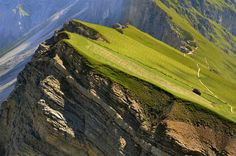 Incredible captures of mountain-side farming in the province of Bolzano-Bozen in Italy. The incline is steep but the view at the top must be amazing!