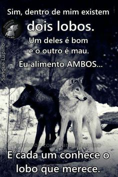 Mais nada!!!! Rat Look, Wolf Love, Lone Wolf, Sentences, Quote Of The Day, Wisdom, Thoughts, Humor, Feelings