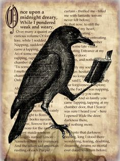 """a raven reading """"The Raven"""" - by cb craig"""
