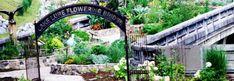 Visit the Unique Lake Lure Flower Bridge Park In North Carolina