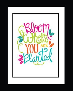 Now available as a print :) Fine Art Print - Bloom Where You are Planted #finelinesartanddesign #quotes