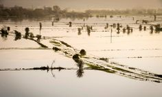 Hotter planet spells harder rains to come – study #climatechange #globalwarming