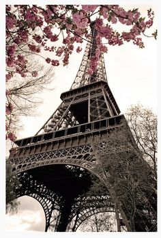 Paris in the Spring http://Paris.com