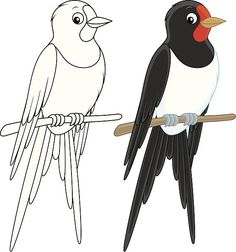 House martin perched on a branch, color and black-and-white. Cute Disney Drawings, Art Drawings For Kids, Easy Drawings, Bird Coloring Pages, Coloring Books, Craft Projects For Kids, Art Projects, Beaded Embroidery, Hand Embroidery