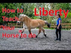 How to Teach your horse to do LIBERTY Part 2 [Liberty Circles] - YouTube