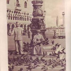 #tbt pigeons on #venice 1867