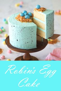 A classic robin's egg cake perfect for your next spring-time or Easter gathering featuring a moist vanilla cake covered in a perfectly sweet vanilla buttercream.