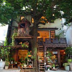 都会の真ん中にツリーハウス!緑あふれる屋上テラス席が人気のカフェ、広尾「レ・グラン・ザルブル」 | ことりっぷ