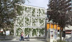 Skyflor®, un nouveau système autoportant de façades végétales ventilées intégrant un support en béton à haute performance
