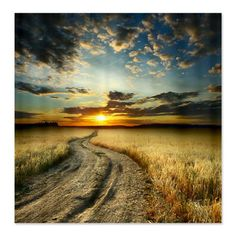 'Landscape with Track' Photographic Print on Canvas East Urban Home Sunset Road, Photographer Portfolio, Cool Landscapes, Framed Wall Art, Paths, Sunrise, Country Roads, Clouds, Sky