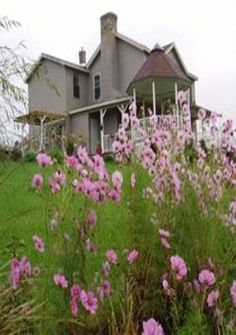 Old Farm House and lots of wild flowers....some day ill get there...some day.