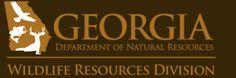 Georgia's Screech Owls   Georgia DNR - Wildlife Resources Division: Link at bottom for a .pdf of a screech owl house