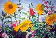 Sunsation watercolor painting MARY WEINSTEIN