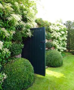 Door to A Secret Garden   Content in a Cottage