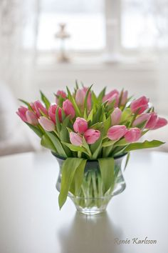 Purple Tulips, Tulips Flowers, Cut Flowers, Spring Home, Favorite Color, Bouquets, Plants, Boards, Farmhouse