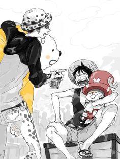 Bepo, Chopper, Law and Luffy