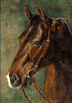 A commissioned portrait of one of my favorite horses. A quarter horse gelding that went by the name of Blue. I love doing horse portraits, especially the ones that I have known and photographed. Deer Pictures, Art Pictures, Animal Paintings, Horse Paintings, Reining Horses, Mediums Of Art, Horse Face, Horse Silhouette, Horse Portrait