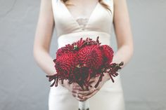 Growing and arranging beautiful Australian Native Flowers and all things Proteaceae. Australian Native Flowers, Winter Wedding Decorations, Bride Bouquets, Boquet, Festival Wedding, Wedding Book, Wedding Stuff, Bridal Flowers, Real Weddings