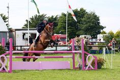 http://www.pinkladies.org.gg/clientpics/horse-jump-photo-Aug-2008.jpg