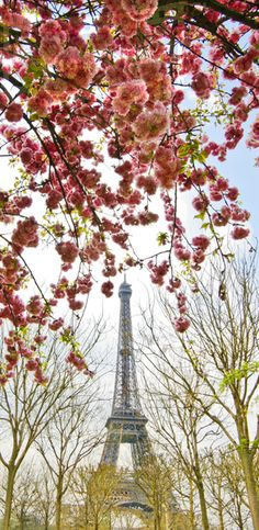 Eiffel Tower in Spring Panoramic Images, Tower, Spring, Travel, Beautiful, Art, Art Background, Viajes, Lathe