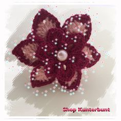 Haarblüten, Haarblume, dunkelrot mit apriko Dark Red
