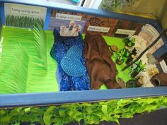 We're Going on a Bear Hunt story tray classroom display photo - Photo gallery - SparkleBox