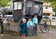 amish kids and buggy