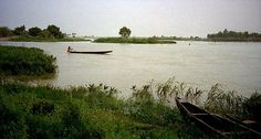 Niger River - NIger - community action for sustainability - CASwiki Ecuador, Equador Quito, Italy Train, Bush Plant, Denmark Travel, West Africa, Beautiful Lights, Planting Flowers, Denmark