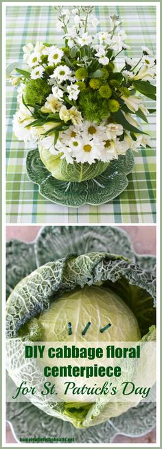 Use a cabbage as a vase to serve up flowers for a centerpiece for St. Patrick's Day| ©homeiswheretheboatis.net #DIY #StPatricksDay #floralarrangement #cabbagevase
