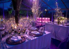 northern lights themed wedding - Google Search