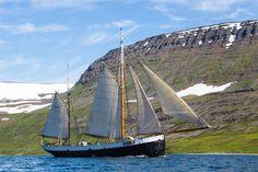 Tecla in Iceland