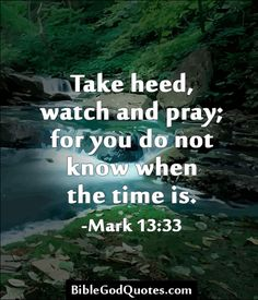 More Bible and God quotes: BibleGodQuotes.com  Mark 13:33  King James Version (KJV)  33 Take ye heed, watch and pray: for ye know not when the time is.