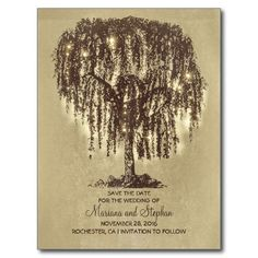 rustic willow tree & string lights save the date postcard