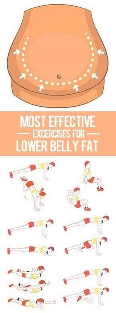 Most Effective Exercises for Lower Belly Fat.